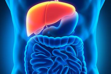 صدمات کبدی ناشی از مکملهای  غذائی
