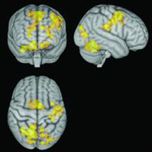 طرز کار مغز ضمن مراقبه