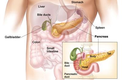 درمان های اضافی سرطان پانکراس باحداقل فایده