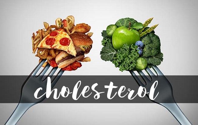 کلسترول نوعیچربی، هممفید و هممضر