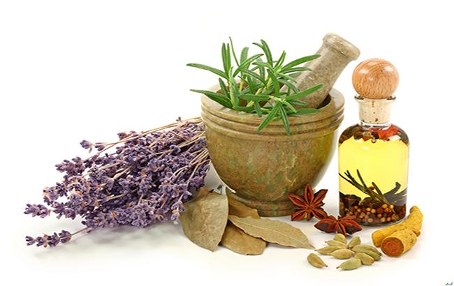 کاربرد داروهای گیاهی در درمان بیماریها