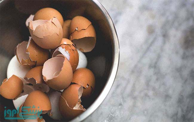 نقش پوست تخم مرغ در ترمیم استخوان