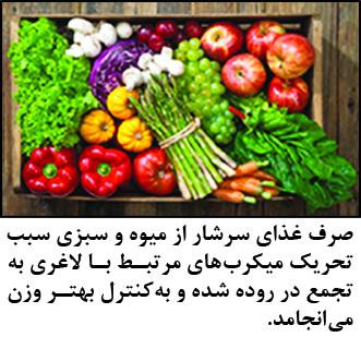 غذای سالم ومیکربهای چاقی