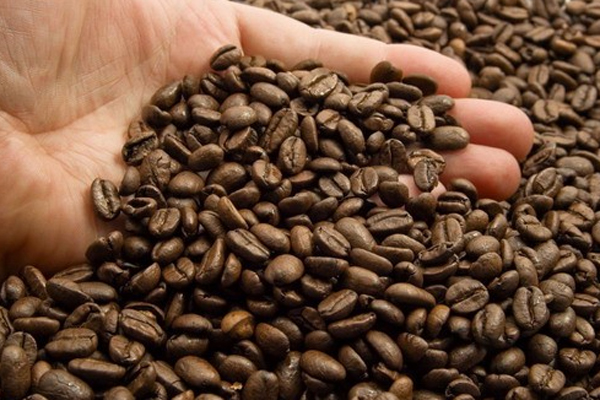 قهوه ومرگ ومیر