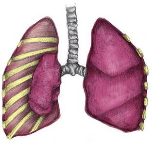 کاهش بیماری ریه