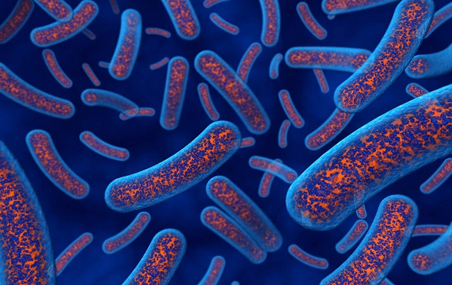 مقابله با باکتریهای تهدیدکننده زندگی بدون آنتیبیوتیک