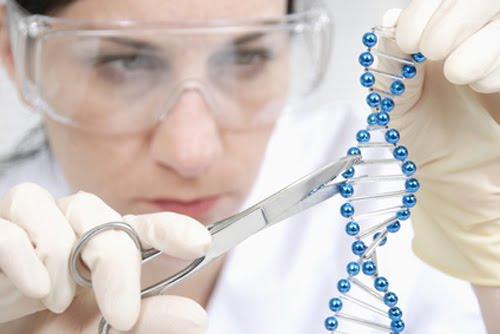 ترمیم ژنتیکی جنین