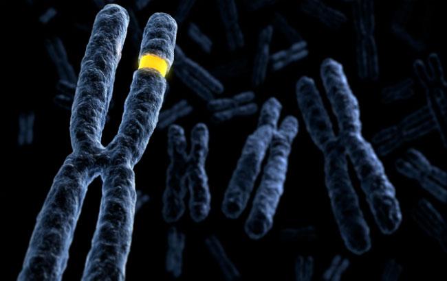 بررسی واریتههای ژنتیکی مؤثر در دیابت نوع۲