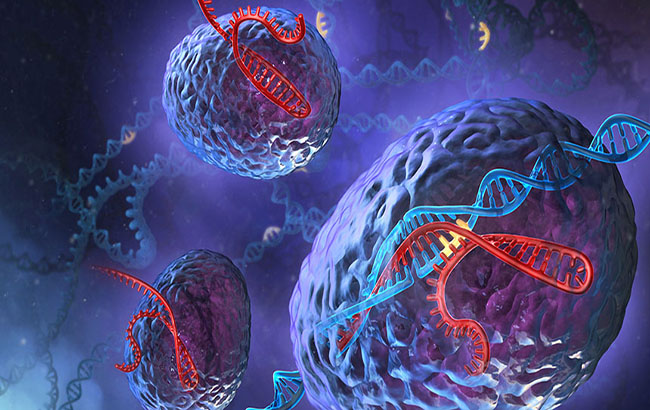 نگاهی به کارکرد ژنها در بیماریهای خودایمنی