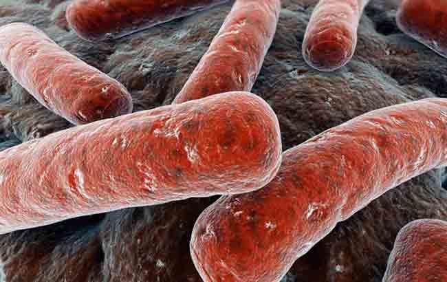 تأیید اولین آزمونهای خطر ژنتیکی مستقیم بیماریها توسطFDA
