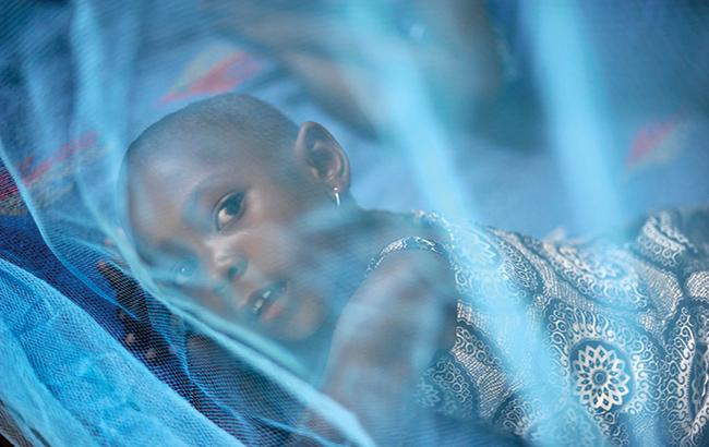 تغییر ساختار ژنتیکی پشهآنوفل برای مقابله با مالاریا