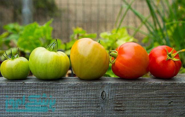 تاثیر رب گوجه فرنگی نامرغوب بر سلامت انسان
