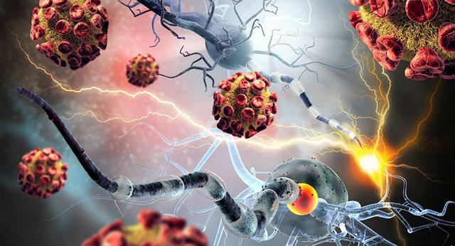 تولید مادهای جدید برای درمان سرطان کبد