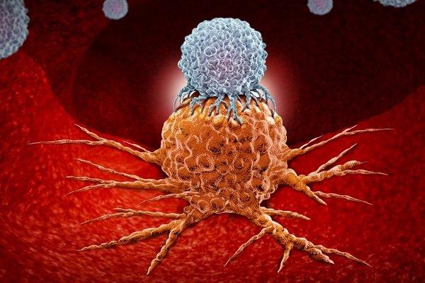 تاثیر ویتامین D بر کاهش میزان تهاجمی سلول های سرطان پوست