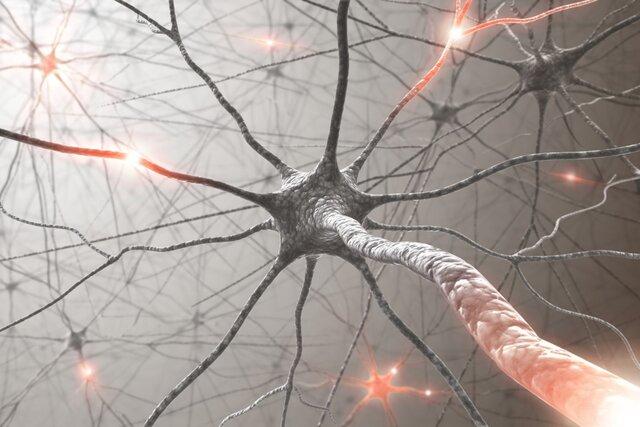 """ارتباط """"بیماری نورون حرکتی"""" با کلسترول"""