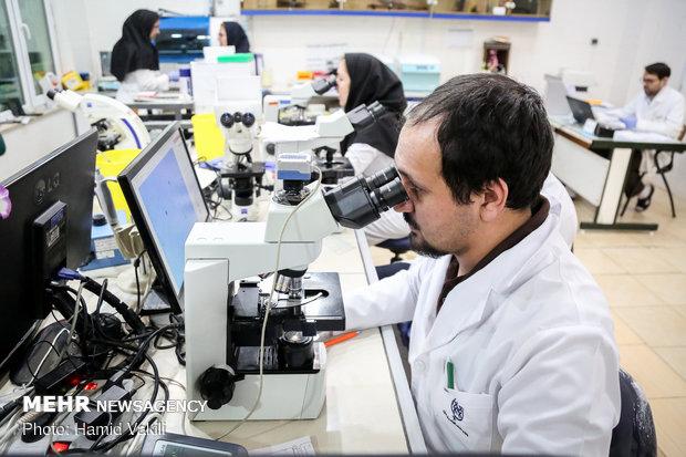 پراستنادترین دانشگاهها و پژوهشگران در ۱۰ سال اخیر معرفی شدند