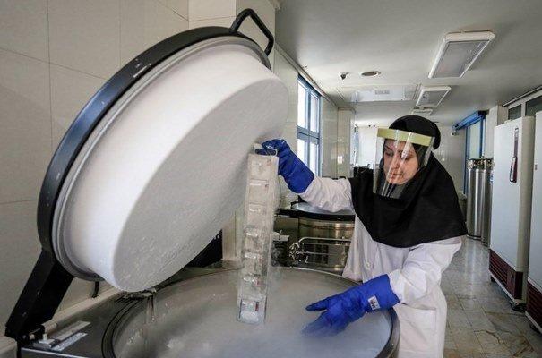 پارک فناوری دانشگاه علوم پزشکی شهیدبهشتی راه اندازی می شود