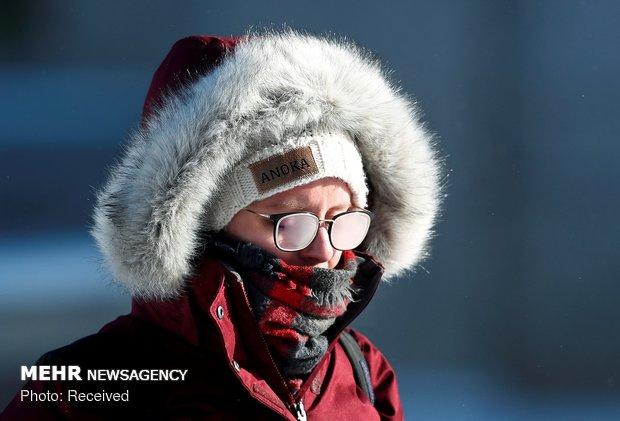 شناسایی پروتئینی که سرما را حس می کند