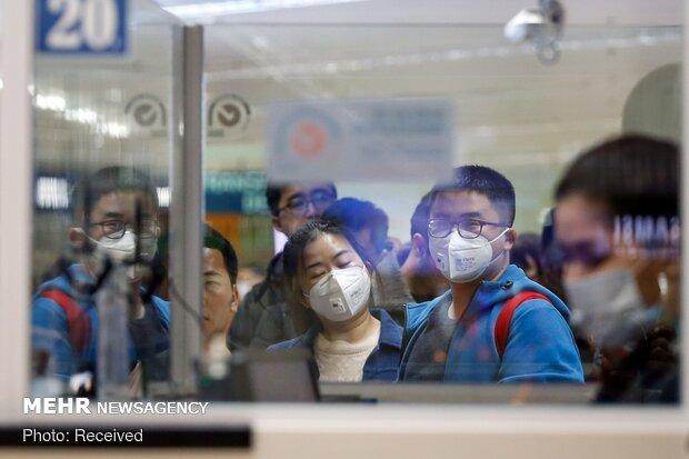 ویروس کرونا در ۱۸ ماه ۶۵ میلیون نفر را قربان می کند