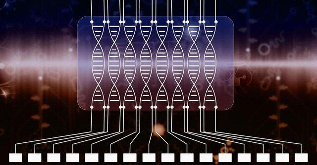 """ساخت مدار رایانه از دی.ان.ای در دانشگاه """"راچستر"""""""