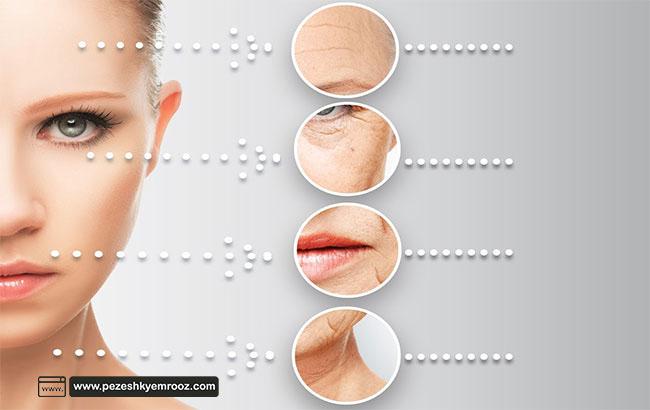 پوست| کلاژن| سلول| بافت| رژیم غذایی|  پیشگیری از کاهش کلاژن و روند پیری پوست