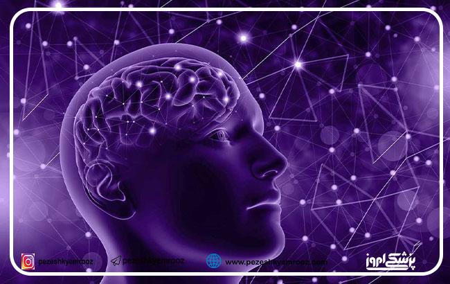 اثرات درمانی استفاده استنشاقی اگزوزومهای مشتق از سلولهای بنیادی  مزانشیمی در بیماری آلزایمر