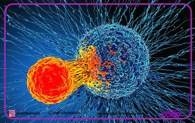 تلفیق دارویی هدفمند ، موثر در درمان سرطان